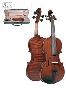 leonardo-viool